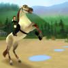 jeux avec des chevaux